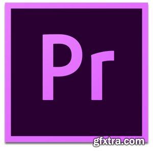 Adobe Premiere Pro 2020 v14.1