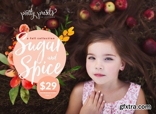 Pretty Presets - The Sugar And Spice Collection Lr Presets