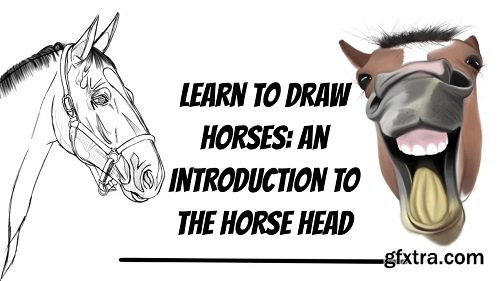 Learn To Draw Horses: An Introduction To The Horse Head